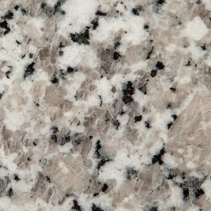 SWATCH-Granite-Bianco-Sardo