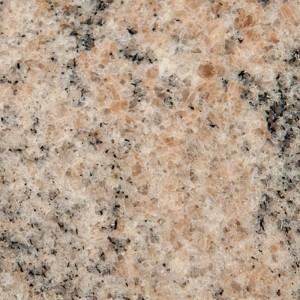 SWATCH-Granite-Juparana-Colombo